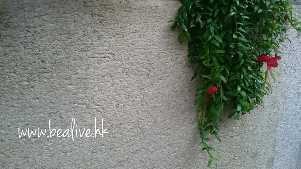 Fotor_143384120500588
